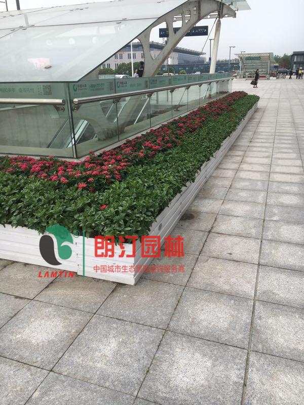 朗汀城市生态空间装饰案例-扬州火车站景观提升工程