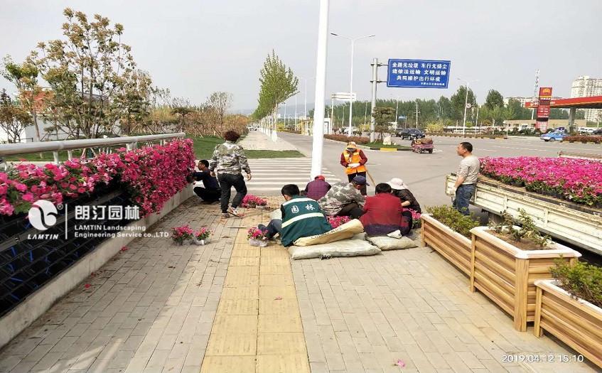 5012植物墙模块式花盆