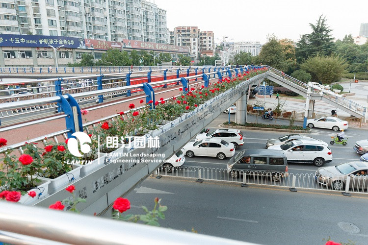 人行天桥绿化景观提升