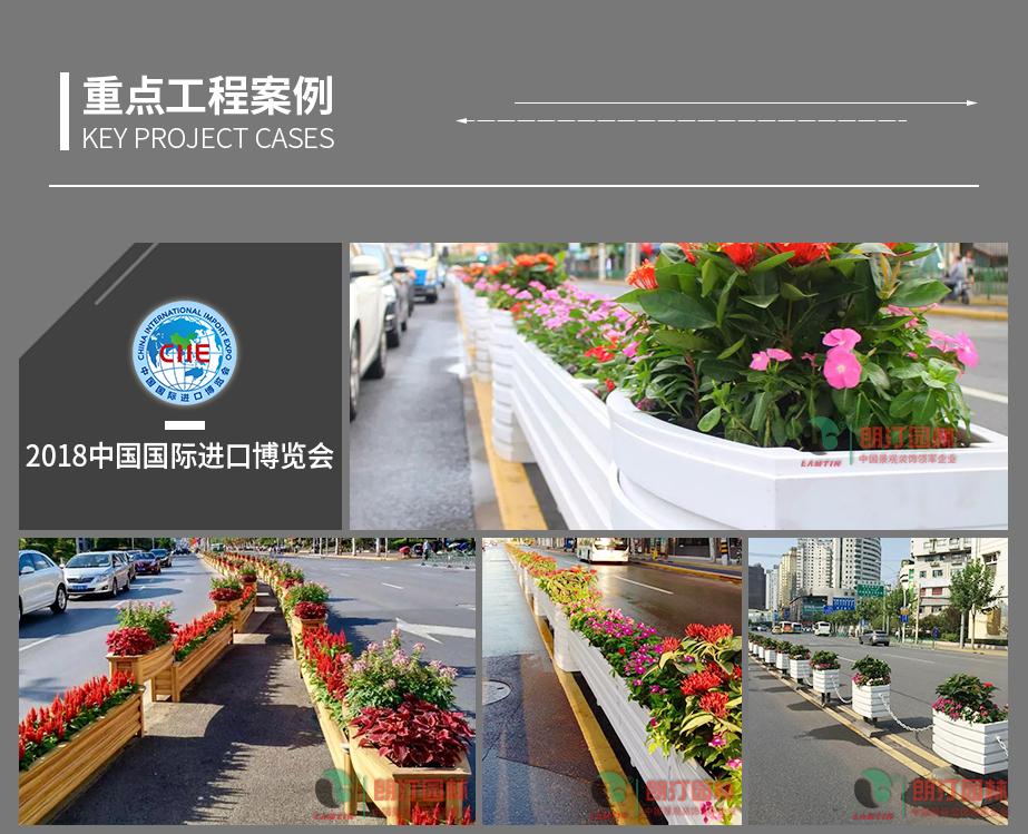 1 上海进博会道路绿化案例