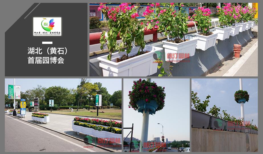 4 湖北园博会立体绿化工程案例