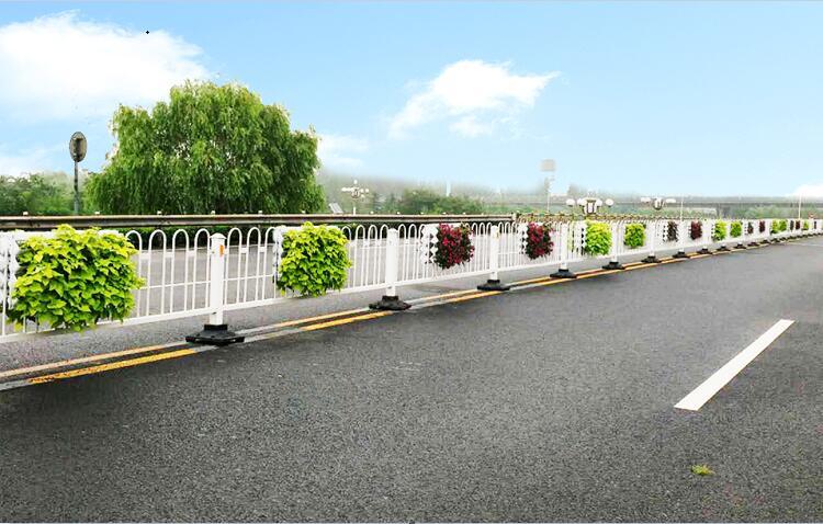 山东淄博护栏绿化案例