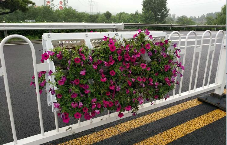 道路中央隔离护栏挂花花盆