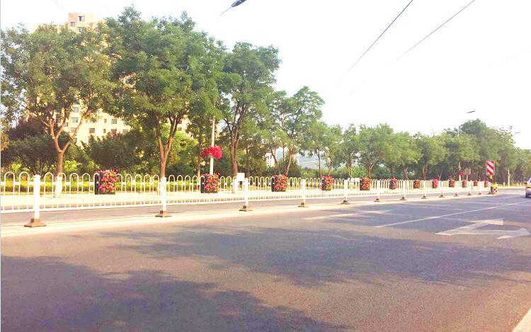 道路中央隔离栏绿化种植槽