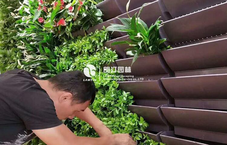 墙体绿化快捷花盆3316植物花卉种植