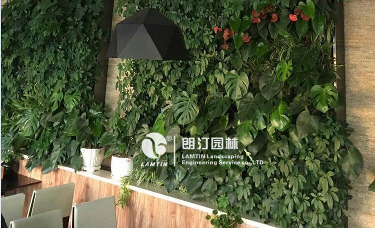 绿墙花盆厂家