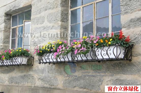 改善环境   对阳台和窗台进行绿化,种植一些树木花草,除了同样有净化
