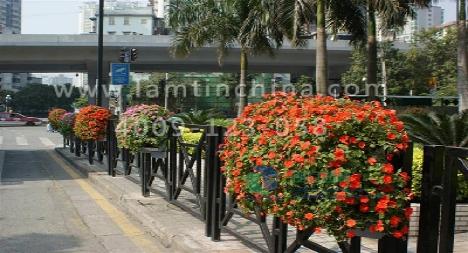 在立体绿化中我们常用于护栏绿化,道路,公园墙体绿化的系列花盆.