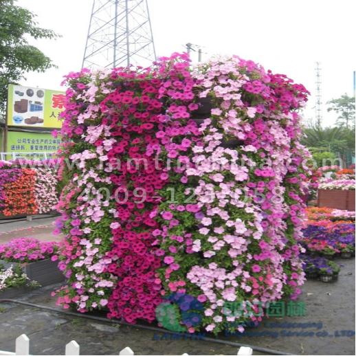 方形花柱组合花盆,让植物向上行走